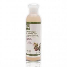 Sampon bio pentru par vopsit cu ulei de masline
